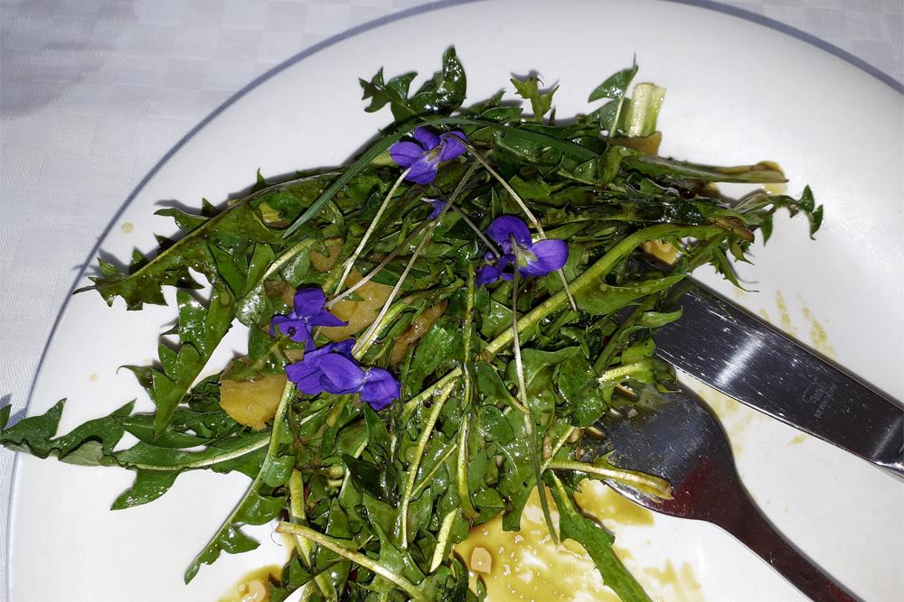 25. April 2019 – Hol dir die Kräuter ins Leben – Frühlingskräuter – kennenlernen, kochen, kosten